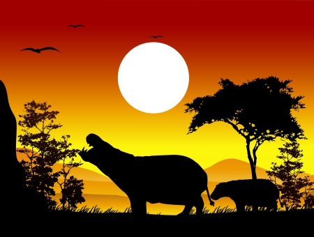 hippopotamus: beauty hippo silhouettes with landscape background Illustration