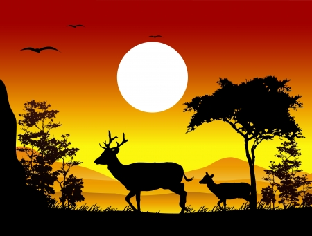 beauty deer silhouettes with landscape background Vector