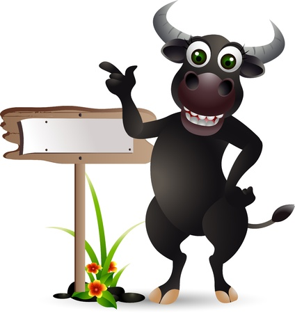 spanish bull: funny buffalo cartoon with blank board