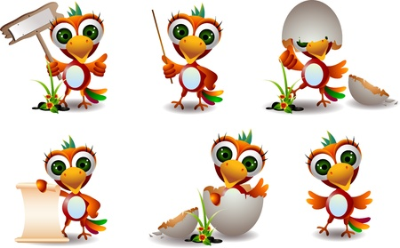 parakeet: cute baby parrots cartoon set