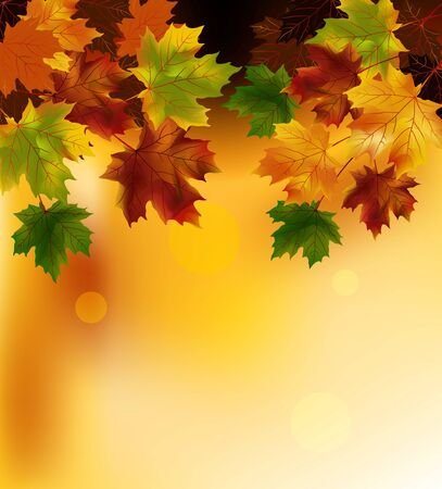 Autumn background with leaves Stock Vector - 16195851
