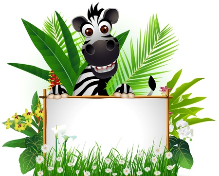 funny zebra with blank sign and tropical forest background