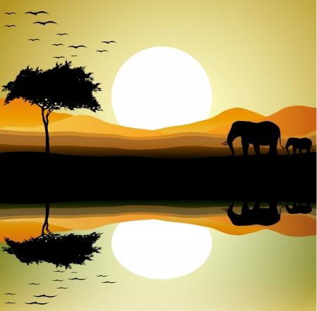 naturaleza: belleza safari de elefante con fondo de paisaje Vectores