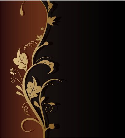scroll border: vector illustration of beauty floral background