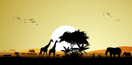 beauty silhouette of safari animal wildlife Vector