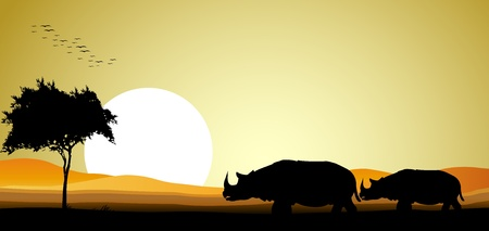 beauty couple rhino silhouette with sunset background Stock Vector - 16593465