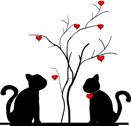 new love: silhouette of a cat in the tree of love