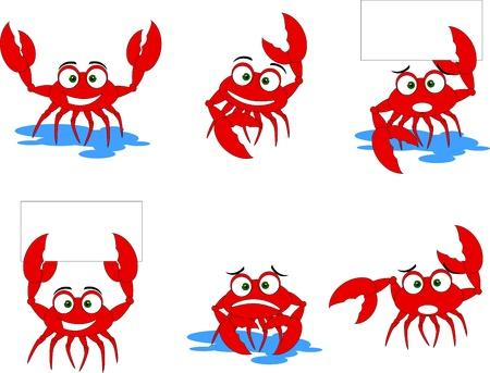 ocean cartoon: funny red crabs cartoon collection