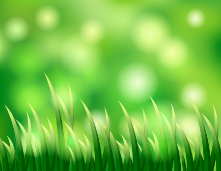 grass background for you design Stock Vector - 17106697