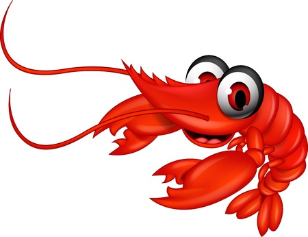 funny red shrimp cartoon Vector