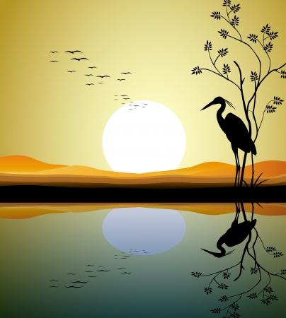 heron silhouette on lake  Illustration