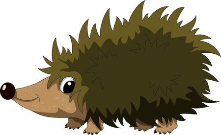hedgehog: cute hedgehog cartoon