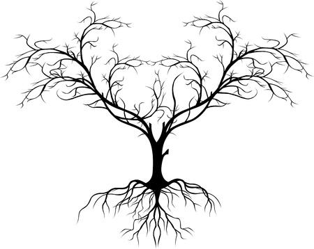 raices de plantas: silueta del árbol sin hojas