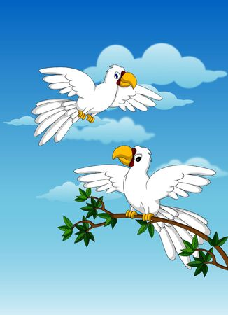 cute couple white parrot Stock Vector - 17840700