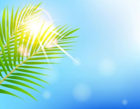 beauty Sunny blue sky and palm tree Stock Vector - 18308727