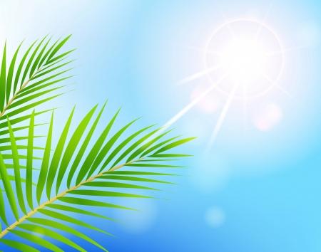 beauty Sunny blue sky and palm tree