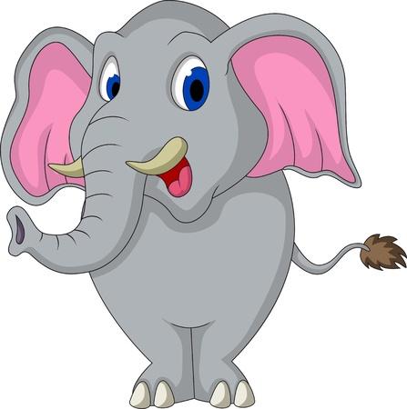 ivory: cute elephant cartoon
