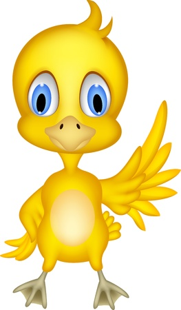 Cute chick cartoon  Vector