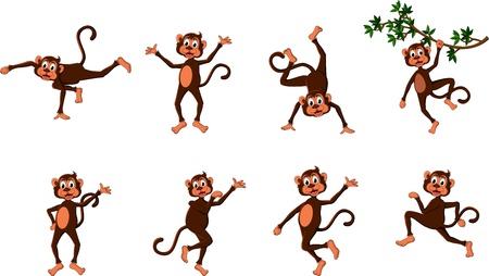 maliziosa: serie di cute scimmia comico Vettoriali