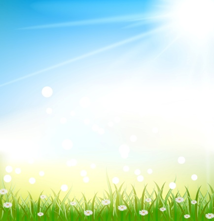 sun flowers: nature background with grass and light effects Illustration