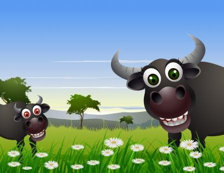 buffalo grass: buffalo cartoon with nature background Illustration