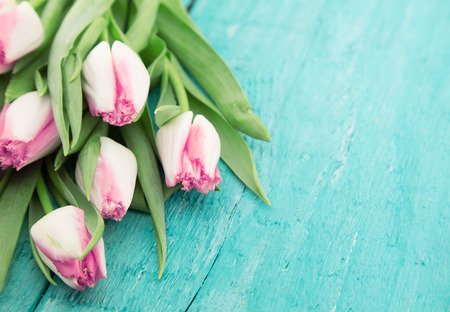Bouquet of Tulips on turquoise rustic wooden background with copy space for message. Spring flowers. Greeting card for Valentine's Day, Woman's Day and Mother's Day holidays. Soft focus