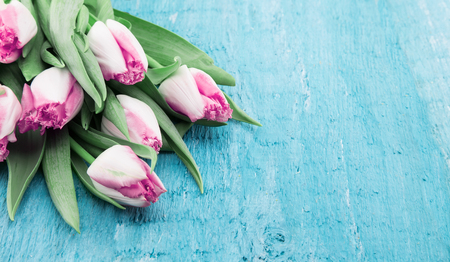 Bouquet of Tulips on turquoise rustic wooden background with copy space for message. Spring flowers. Greeting card for Valentines Day, Womans Day and Mothers Day holidays. Soft focus Stock Photo