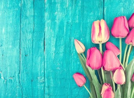 Frame of tulips on turquoise rustic wooden background. Spring flowers. Spring background. Valentines Day and Mothers Day background. Top view.