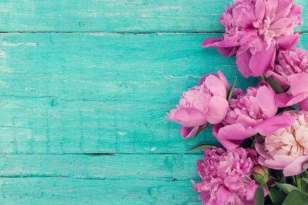 Bouquet of pink peony flowers on turquoise rustic wooden background with empty space for greeting message. Mothers Day and spring background concept. Holiday mock up. Top view. Stock Photo