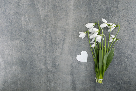 Bouquet of snowdrops on gray stone  background with copy space for message. First spring flowers. Greeting card for Valentines Day, Womans Day and Mothers Day holidays. Top view.
