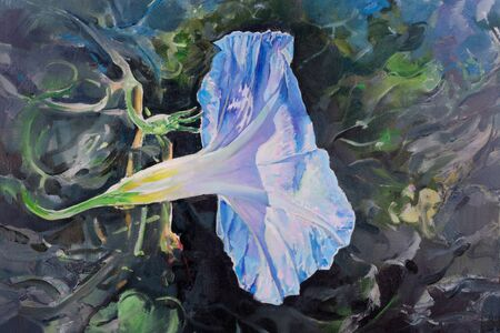 Bindweed violet and blue flower, painting photo