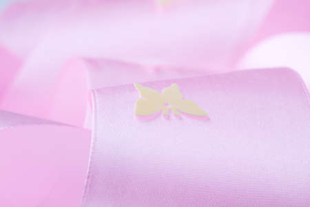 Butterfly on the pink ribbon