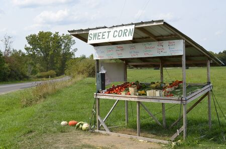 roadside stand: Roadside vegetable stand on a rural Michigan roadway