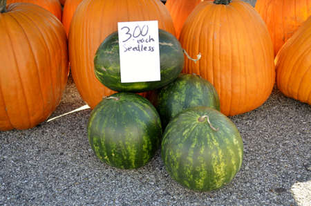 Fresh pumpkins and watermelon for sale at a local outdoor food market photo