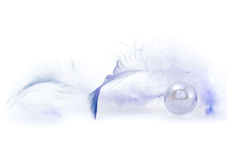 Some dark blue feathers on a white background