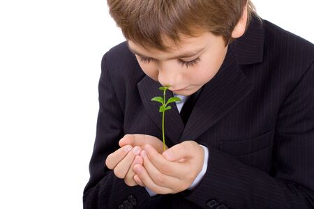 Small green plant in childrens palms, isoleted Stock Photo