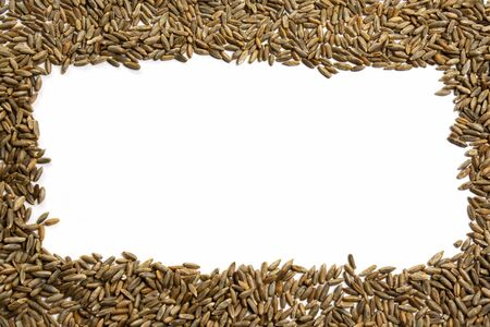Rectangular frame of grains of wheat, barley, rye, oat on white background close up, isolated. Natural dry cereal seeds for the site with the inscription, top view. Free space for text in the center