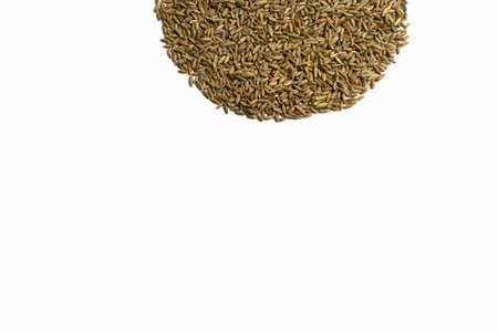 Grains of wheat, barley, rye, oats on a white background close-up, natural dry grain in the form of an even semicircle or sun on top side, wheat seeds, isolated, top view. Free space for text. Stok Fotoğraf