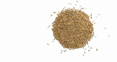Grains of wheat, barley, rye, oat on white background natural dry grain in form of circle with scattered seeds on the right side, isolated, top view. Free space for text. Banner for web site Foto de archivo