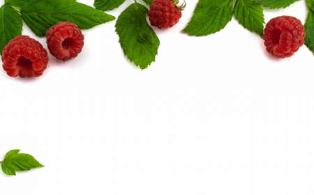 Ripe raspberries isolated on white background close-up. Beautiful red fresh raspberries with leaves along the contour on the table. Top view. Banner for the site. Free space for text