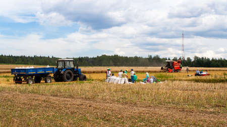 People during harvesting in the field. Break during work. Harvesting wheat and cereals on the field on a sunny day. Seasonal work on a tractor for processing the earth with mineral substances