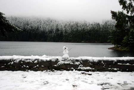 lopsided: Miniature Snowman Edge of a Winter Lake