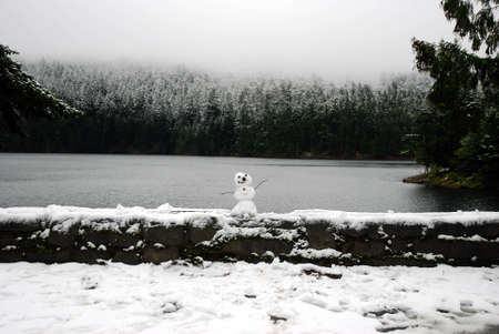 lopsided: Snowman bordo in miniatura di un lago d'inverno