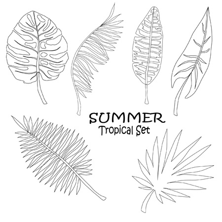 set of vegetative design elements, different tropical leaves with text, black and white vector illustration