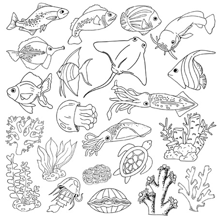 Set sketches of sea animals, fish, corals, seaweed, black on white background, hand drawing, vector illustration Illustration