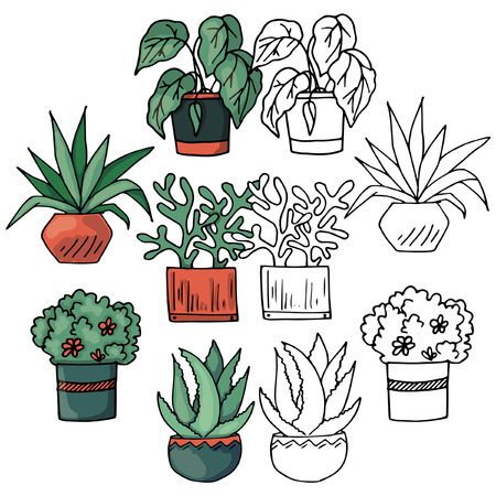 Set of sketch of flowers in pots, black and white and color images, hand drawing, vector illustration Illustration