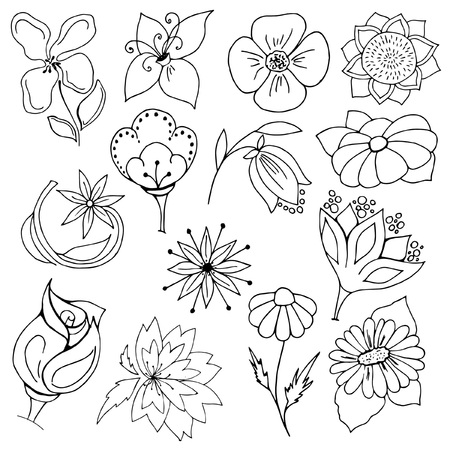 a set of garden flowers, individual design elements, black and white sketches on a white background, hand drawing, vector illustration