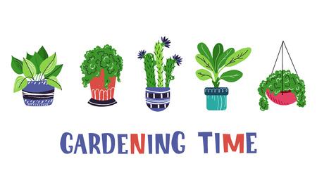 conjunto de plantas caseras o flores en macetas, jardín o invernadero, letras, colección de elementos aislados en blanco. Estilo plano, escandinavo. Ilustración vectorial