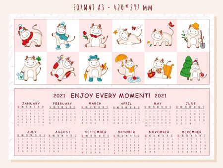 White ox calendar or planner A3 format for 2021 with kawaii cartoon ox, bull or cow, symbol of new year, cute characters - Cover and 12 monthly pages. Week starts on sunday, vector editable template Иллюстрация