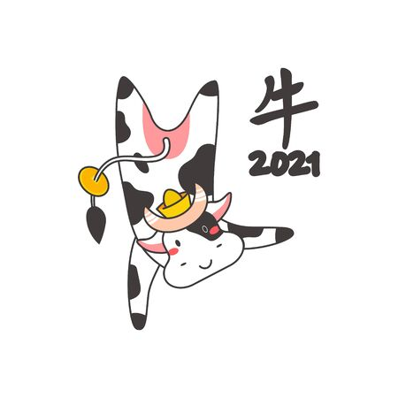 Chinese new year of white ox 2021 zodiac - vector bulls or cows, flat cartoon animals for holiday cards, posters and home decorations, cute characters with golden coins for luck - isolated on white